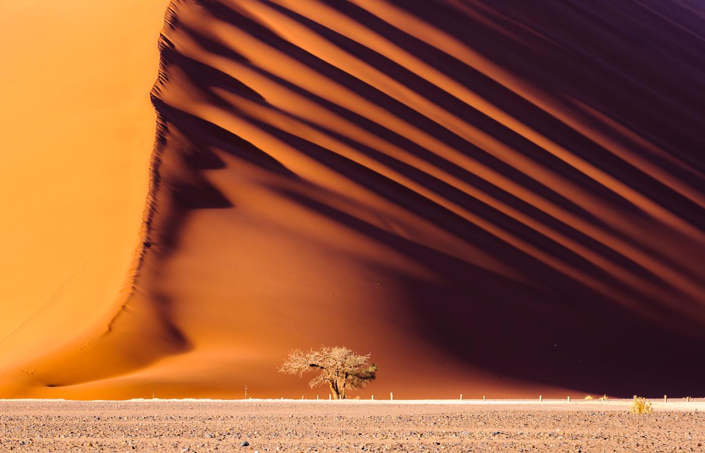 Namibia exquisit & kompakt