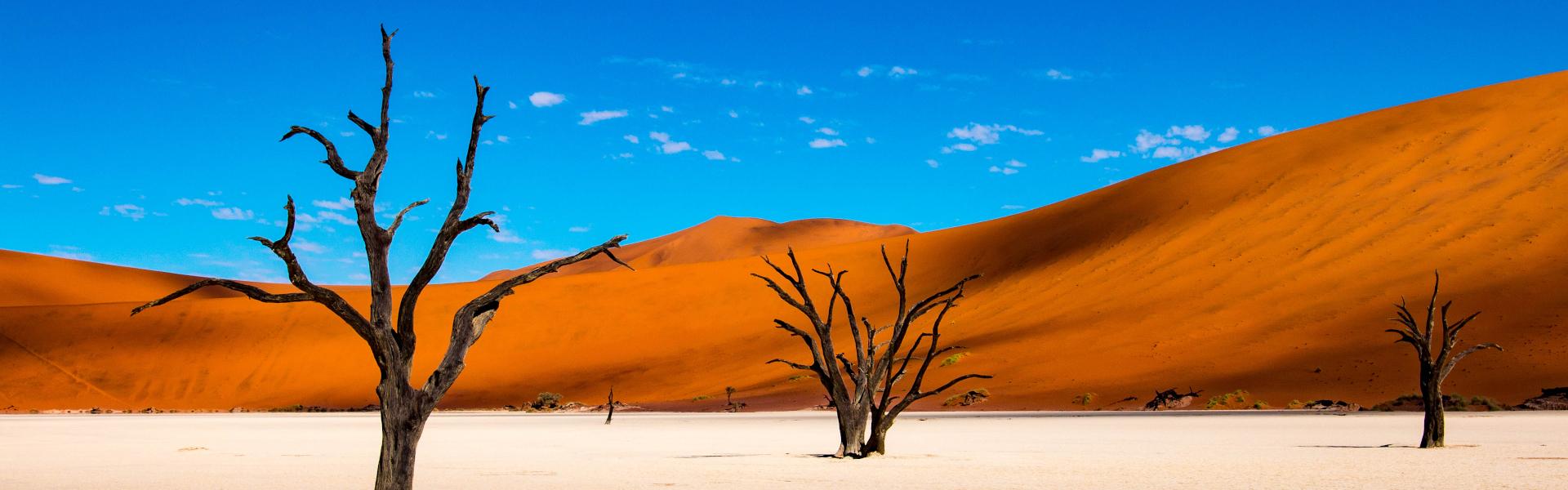 Höhepunkte Namibia