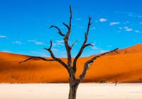 Namibia Mietwagenreise - Höhepunkte Namibia