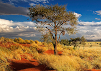 Namibia Mietwagenreise - Namibia Privat & Exklusiv